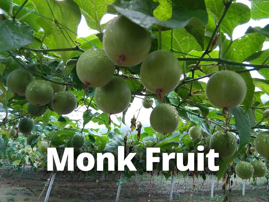 monk fruit monk fruit nature - Science Backed